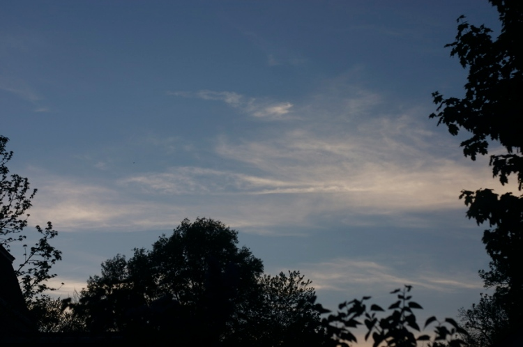 my-sky.jpg