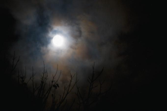 0710_moon_001.jpg