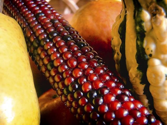 7point-brc-corn-1-of-1.jpg