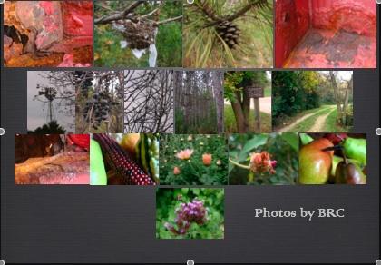 snapshot-2007-10-14-22-13-56.jpg